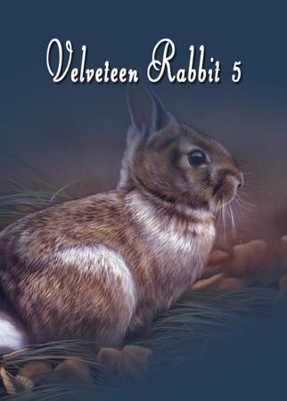 Velveteen Rabbit #5