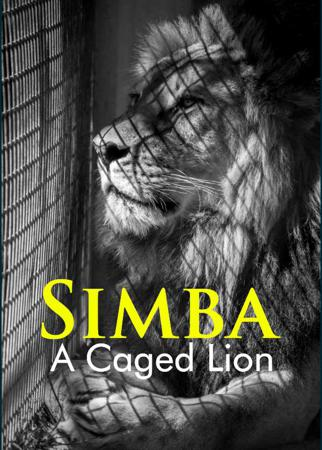 Simba - A Caged Lion