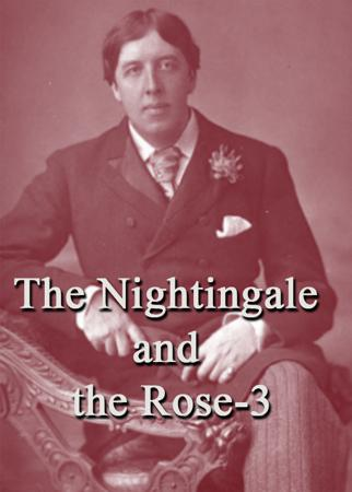 The Nightingale and the Rose-3