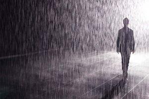 Little Drop In Wild Rain