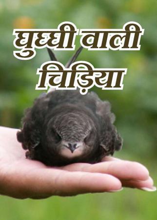 घुघ्घी वाली चिड़िया