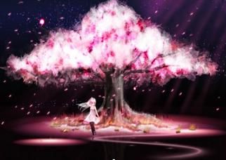 2) A Cherry Blossom Heart 