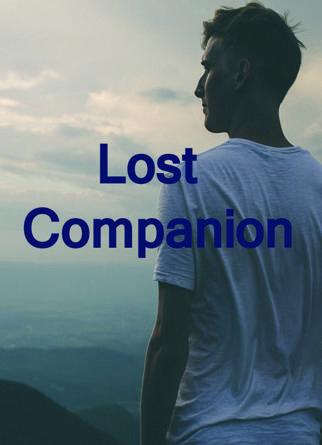 Lost Companion