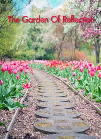 The Garden Of Reflection