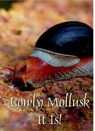 LOWLY MOLLUSK IT IS!