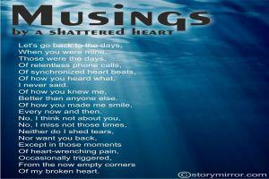 Musings By A Shattered Heart