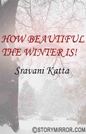 How Beautiful The Winter Is!