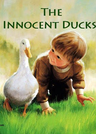 The Innocent Ducks