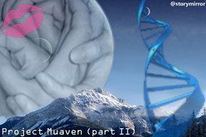 Project Muaven (Part Ii)