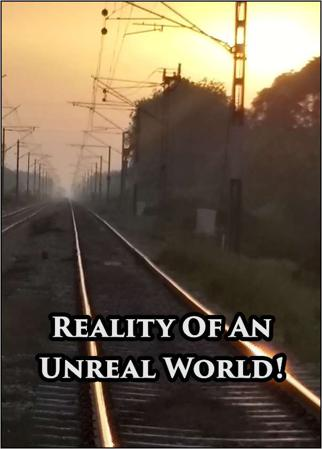 Reality of an Unreal World