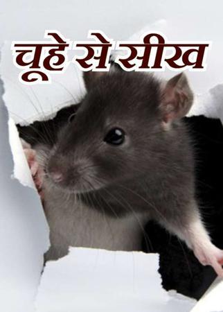 चूहे से सीख