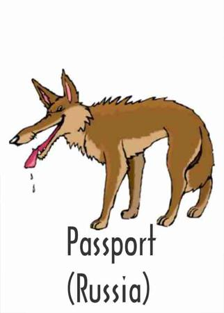 Passport (Russia)