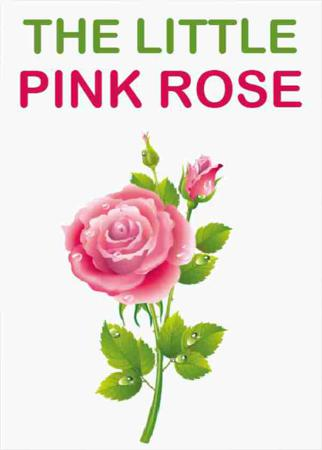 The Little Pink Rose