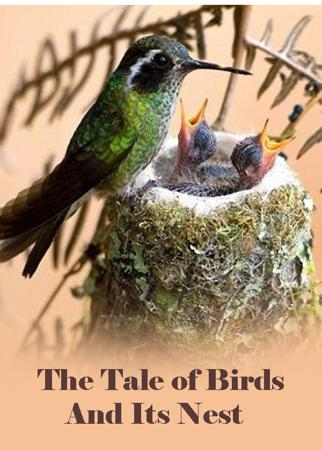 The Tale of Birds And Its Nest