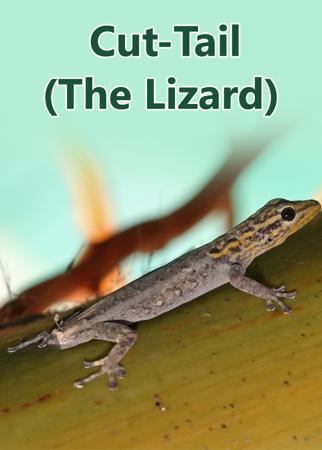 Cut-Tail (The Lizard)