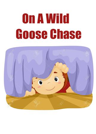 On A Wild Goose Chase