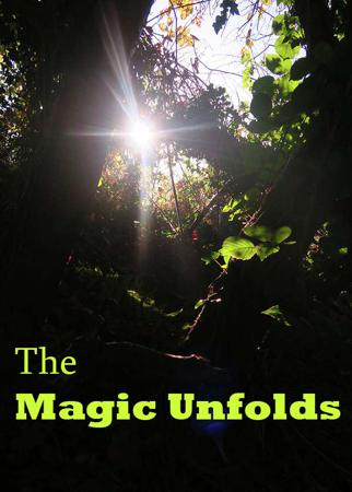 The Magic Unfolds