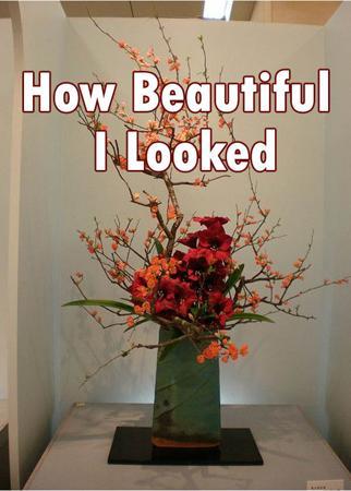 How Beautiful I Looked