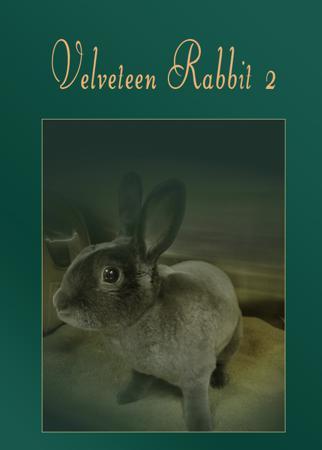 Velveteen Rabbit #2