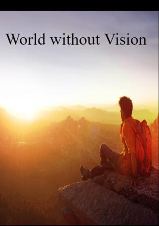 World Without Vision
