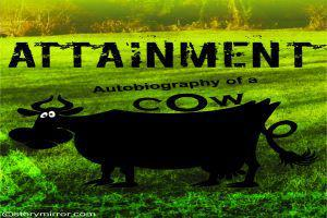 Attainment (Autobiography Of A Cow)