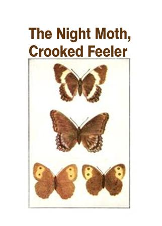 The Night Moth,Crooked Feeler