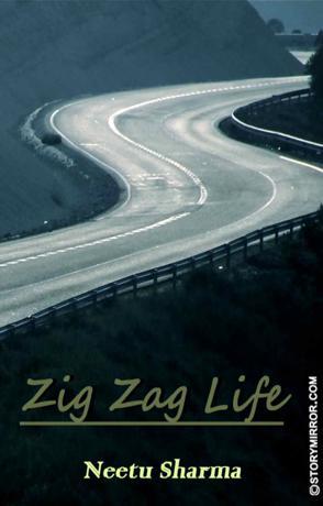 Zigzag Life