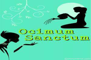 Ocimum Sanctum