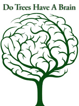 Do Trees Have A Brain