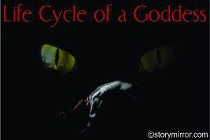 Life Cycle Of A Goddess